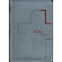 Biblija modernaus dizaino 14,5 x 21 cm, ekumeninė, lanksčiais viršeliais 2020 m. melsva